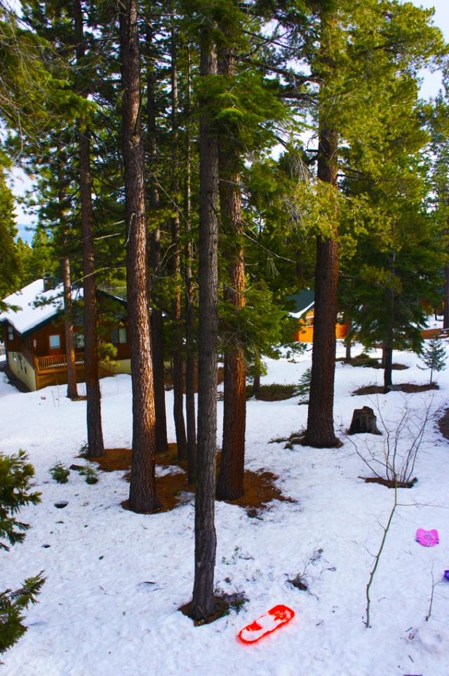 winter1